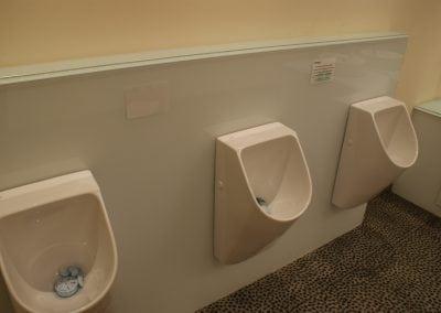 Glass Urinal Back Panel